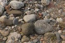 Gravel and Boulders for Landscaping